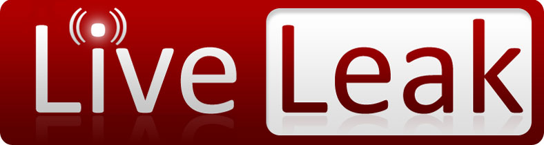 Liveleak Video Downloader